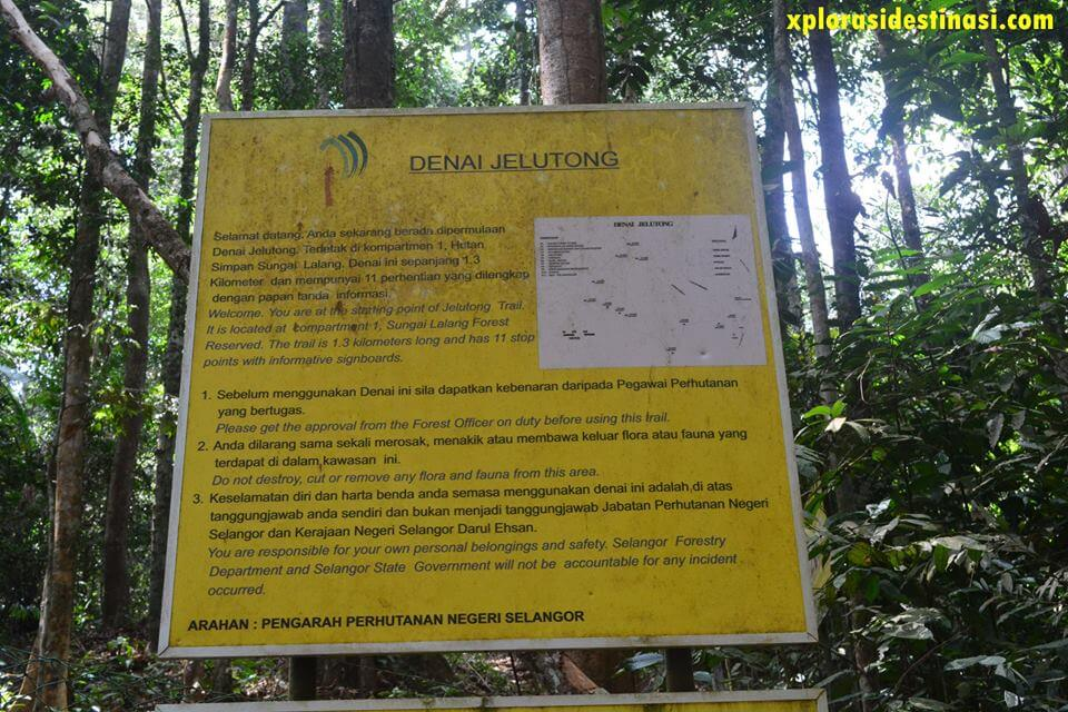 hiking-sungai-tekala
