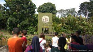 Laluan untuk masuk ke gerbang pintu masuk pulau orang utan