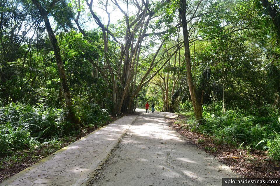 meredah-hutan-kuala-selangor-nature-park