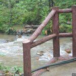 Taman Negeri Selangor – Makan tengahari dan main air sungai di Hutan Lipur Sungai Tua
