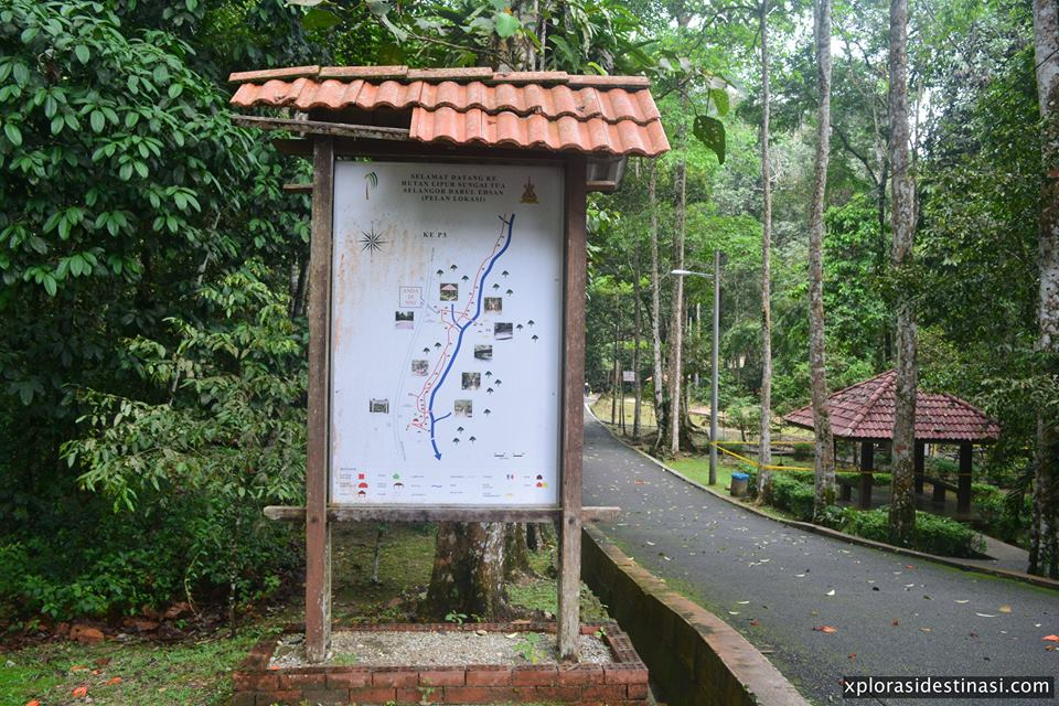 sungai-tua-recreational-forest