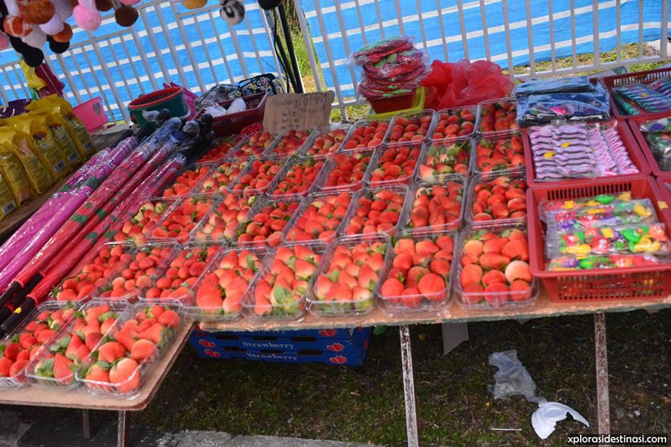 harga-strawberry-pasar-malam-golden-hills