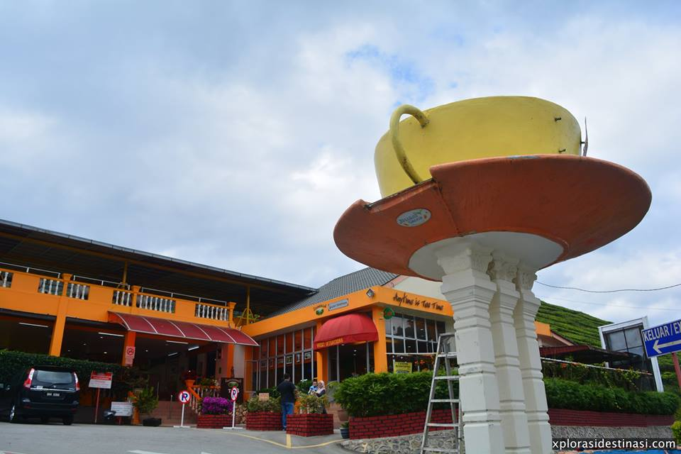cameron-tea-valley-landmark