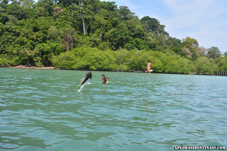 bercuti-ke-pulau-langkawi