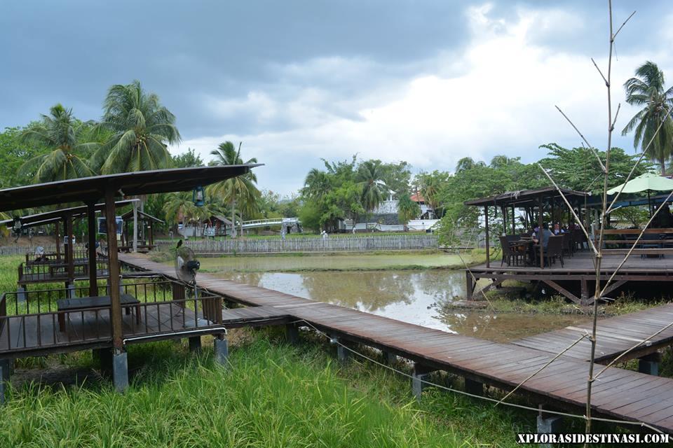 restoran-atas-sawah-padi-langkawi
