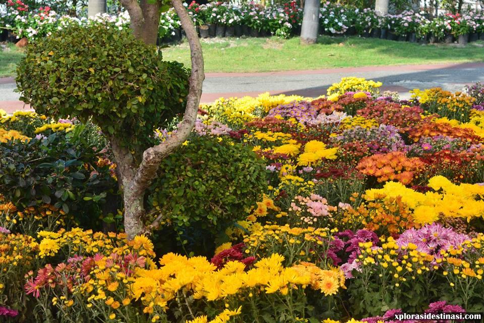 festival-taman-bunga-diraja