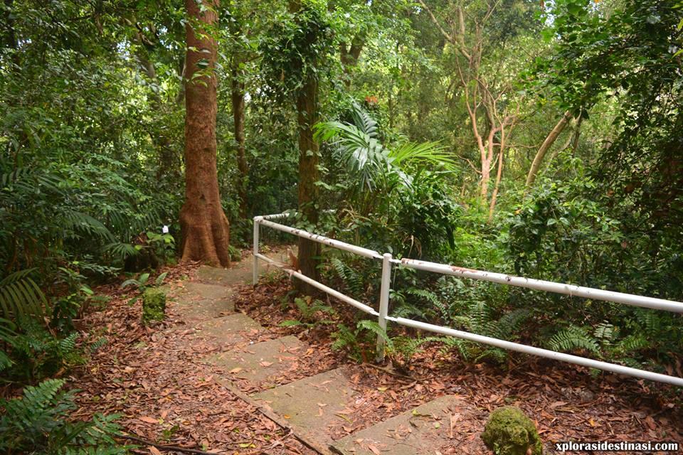 hiking-hutan-rekreasi-tanjung-tuan