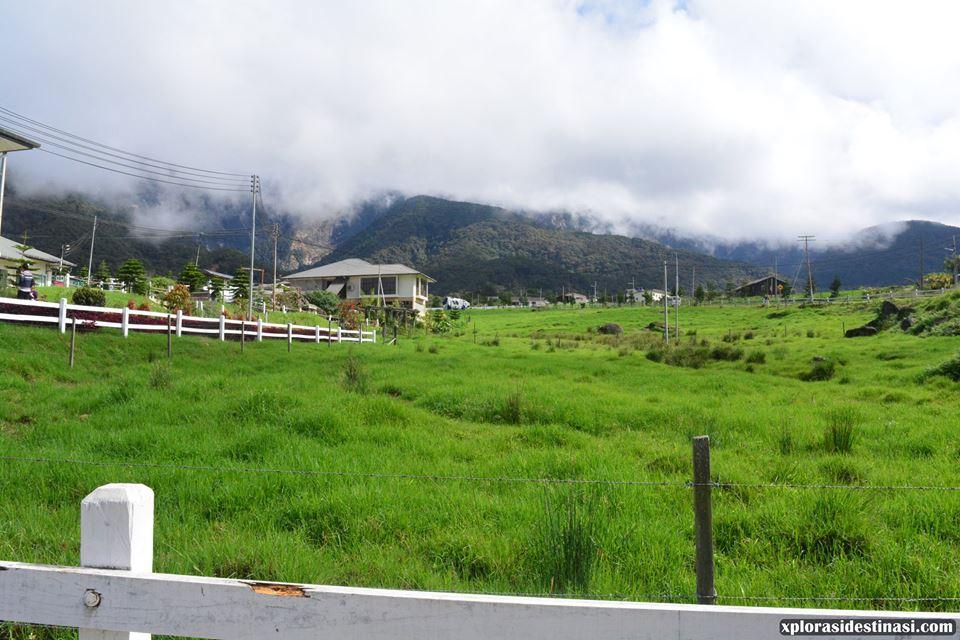 tempat-menarik-di-desa-dairy-farm