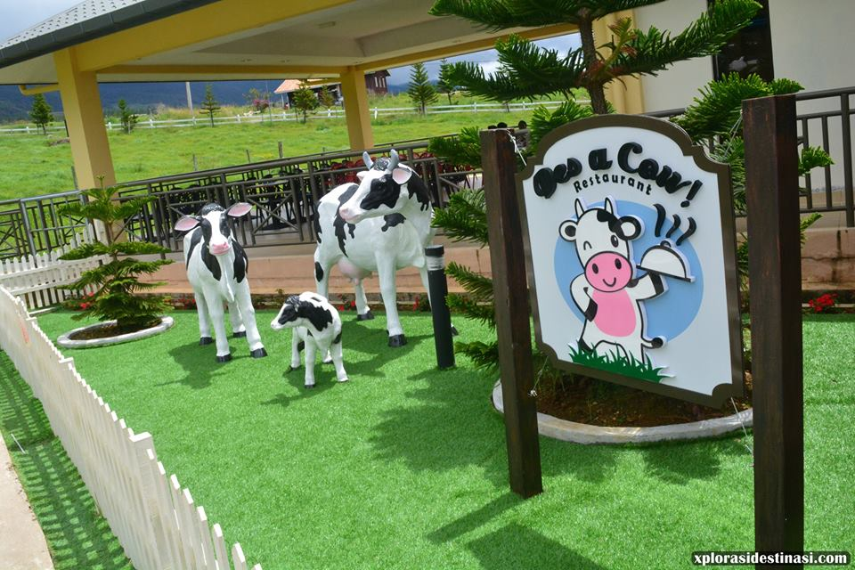 restaurant-desa-dairy-farm