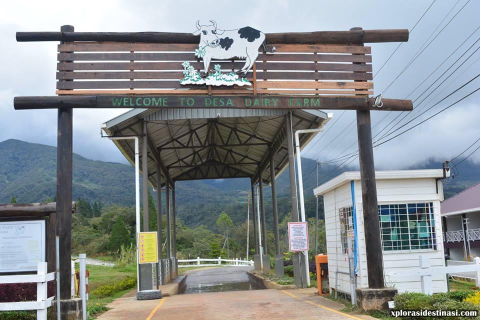 pintu-masuk-desa-dairy-farm