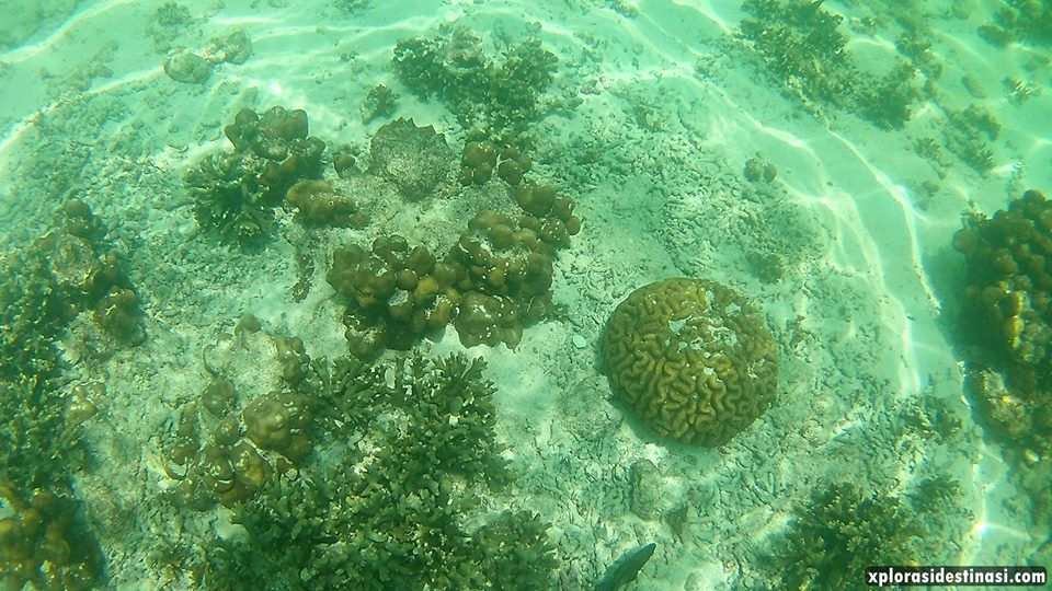 pulau-payar-marine-park-langkawi