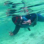 Pengalaman Snorkeling di Pulau Payar Marine Park Langkawi