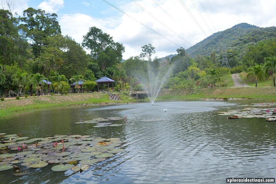 kolam-ikan-langkawi