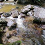 Hutan Lipur Sungai Gabai – Terokai keindahan alam dan piknik bersama keluarga
